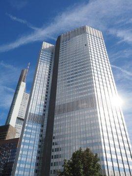 Die Schimmelbeseitigung  Frankfurt entfernt auch Ihren Schimmel!
