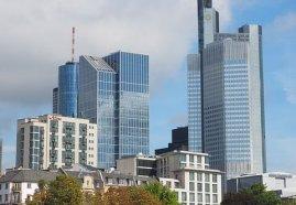 Frankfurter Schimmelsanierung | 356 Tage im Jahr
