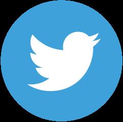 twitter icon blau weiss