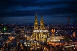 Schimmelbeseitigung & -sanierung Köln