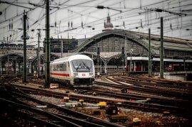 Ihr 24h Schimmelnotdienst in Köln