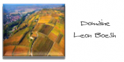 domaine-leon-boesch.png