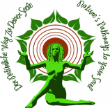 ayahuascaportal.com-logo-vector-small-no-tagline-website.png