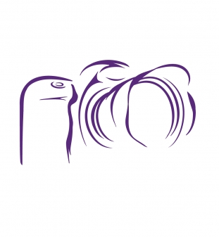 NUR-Logo-m2.jpg