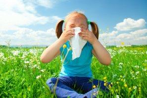 Ihre Hilfe bei Allergien