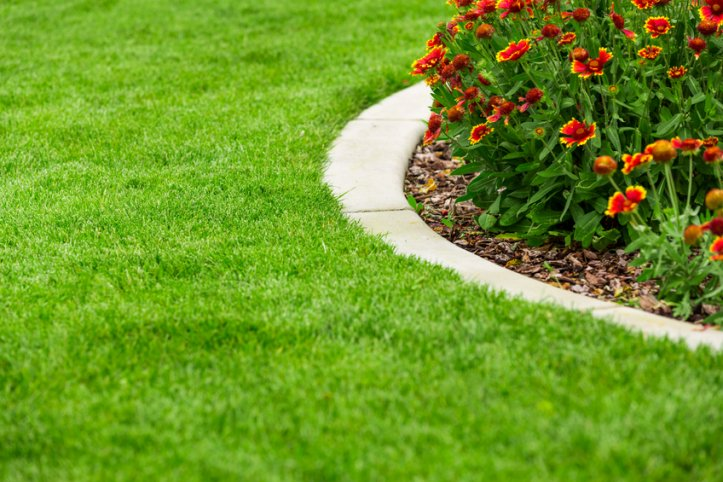 Rippletree lawncare
