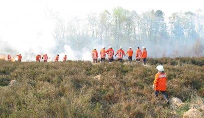 freiwillige-feuerwehr-bekaempft-waldbrand