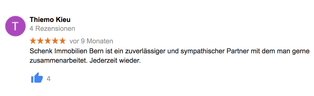 google-referenz-4.-schenk-immo.png.png