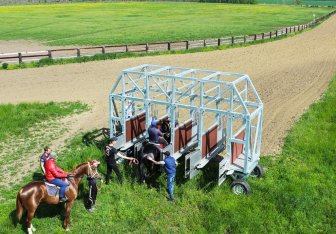 starting-gates-horse-racing (12)