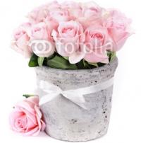 roses_in_a_pot.jpg