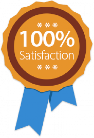 100-satisfaction.png