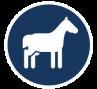 finanzlogik - Pferdehalter Haftpflichtversicherung vergleichen und günstiger