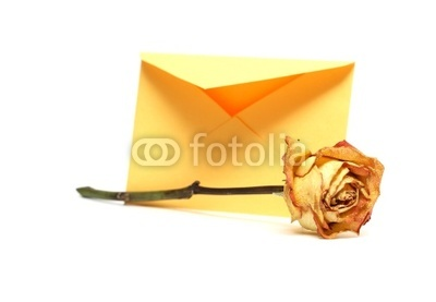 Envelope_And_Rose.jpg