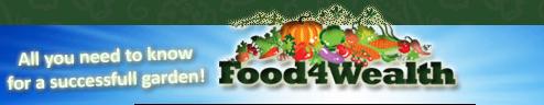 Food4Wealth.png