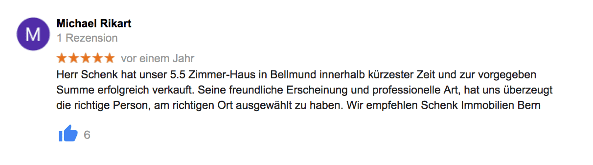google-referenz-5.-schenk-immo.png.png