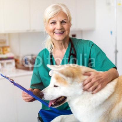 Female-veterinarian-examining-a-dog-in-her-office.jpg