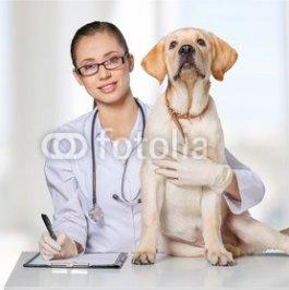 Veterinarian..jpg