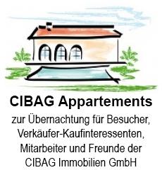 CIBAG-Immobilien-FeWo-Ellmau-Logo-v3.jpg