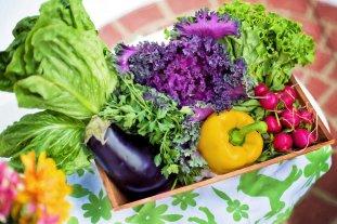 Ernährungsberatung Bochum - Gesunde Ernährung Bochum