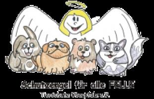 Logo-Schutzengel.png