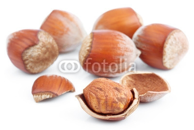 Hazelnuts_isolated_on_white.jpg