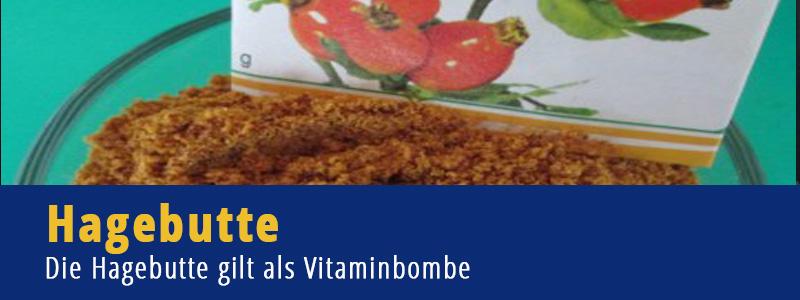 Hagebutte Vitamine