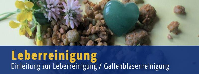 Leberreinigung - Gallenblasenreiniung