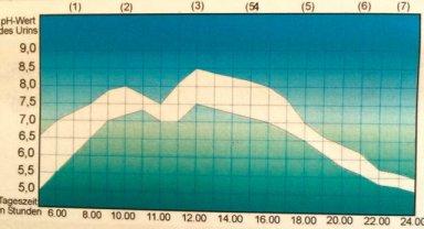 pH-Wert-Tagesprofiltabelle_IMG_1841.jpg