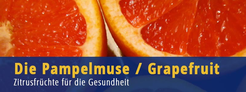 Grapefruit Pampelmuse