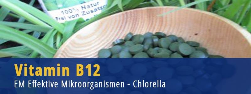 Vitamin B 12, Ernährungsumstellung, Chlorella