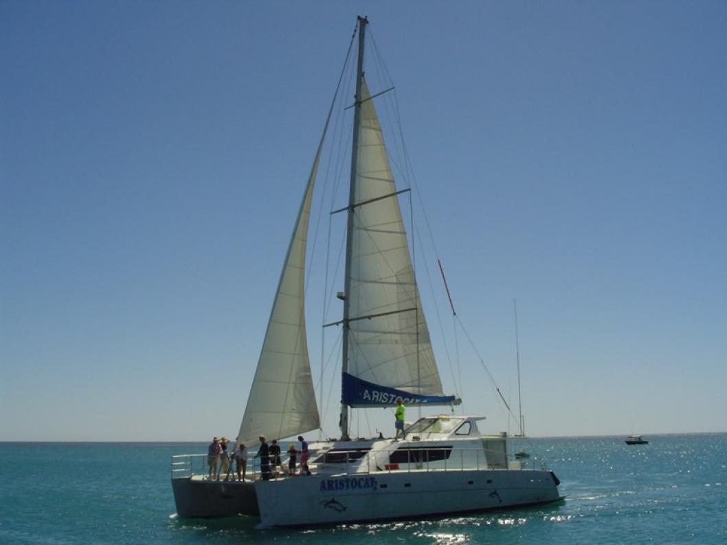 From the Monkey Mia jetty take a Shark Bay wildlife cruise