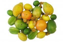 Früchte Sigrist Kleindietwil, Früchteservice, Früchtelieferung
