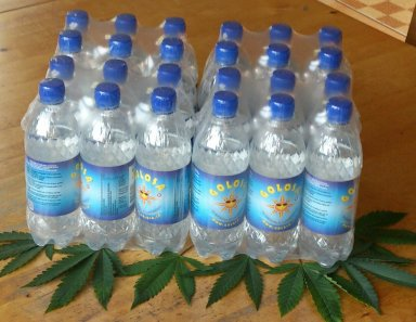 Golosa Tray of 24 bottles of 0,5 liter
