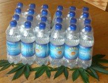 24 er Tray GOLOSA Hanfwasser