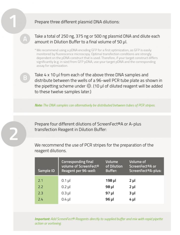 Optimization_Protocol_part_1.png