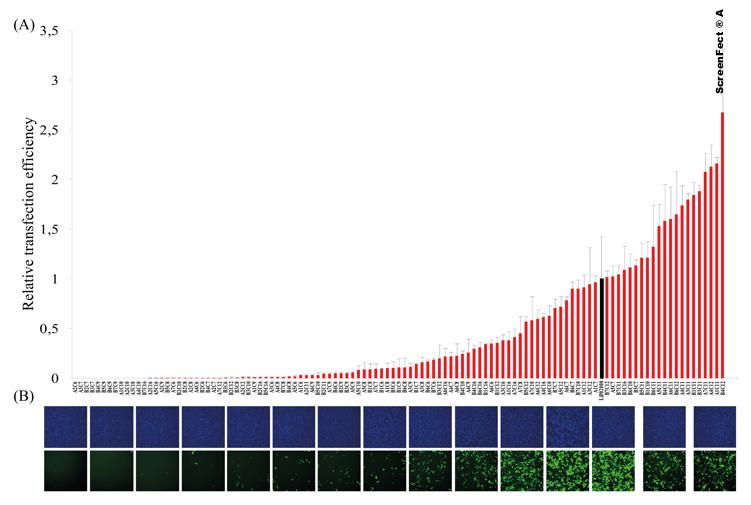 graf2.png