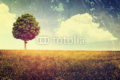 Vintage_Landscape.jpg