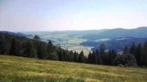 Blick ins Bernauer Tal
