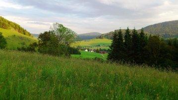 Blick in das schöne Hochtal im Südschwarzwald
