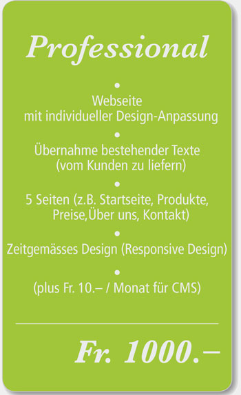 Professional Webdesign Angebot