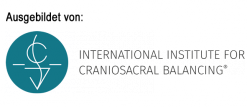 Logo ICSB