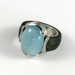 ring1_2.jpg