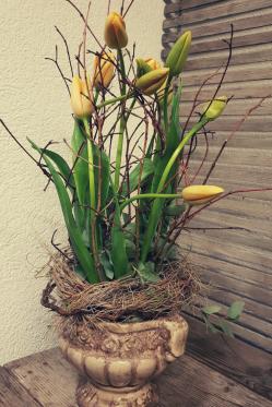 DIY-Tulpen-Gesteck-selber-machen-Franzoesische-TulpenFruehlings-Deko-Idee.png