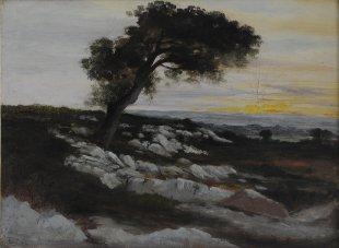 Théodore Rousseau, Chêne à Apremont, Öl auf Karton, 28 x 27 cm