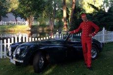 Hochzeit Auto mit PAGE